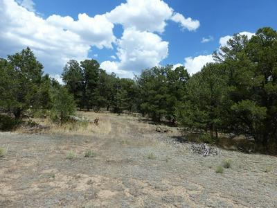 # 26TH TRAIL, Cotopaxi, CO 81223 - Photo 2