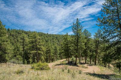14433 S ELK CREEK RD LOT 3, Pine, CO 80470 - Photo 1