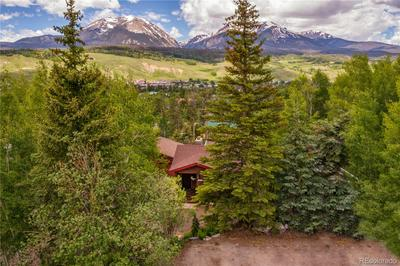 382 HUMMINGBIRD CIR, Silverthorne, CO 80498 - Photo 2