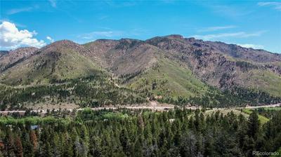9005 MOUNTAIN RD, Cascade, CO 80809 - Photo 2