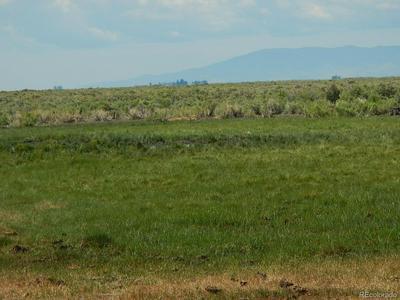 15060 COUNTY ROAD 50, Saguache, CO 81149 - Photo 1