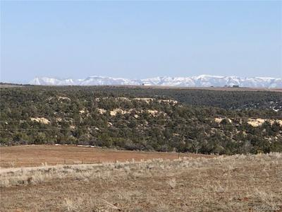 11220 COUNTY ROAD Z, Pleasant View, CO 81331 - Photo 2
