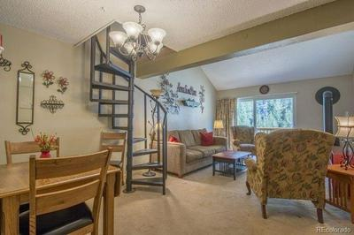 1901 CLEAR CREEK DR # 303, Georgetown, CO 80444 - Photo 2