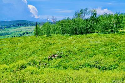 246 LOWER BEAR MTN RD, Kremmling, CO 80459 - Photo 1