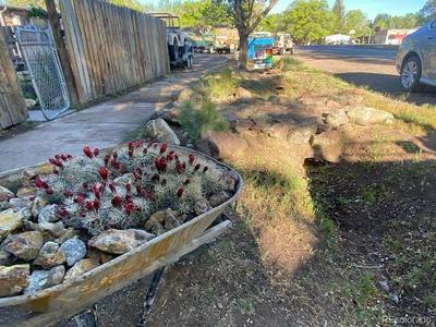 735 & 731 SAN JUAN AVENUE, Saguache, CO 81149 - Photo 2