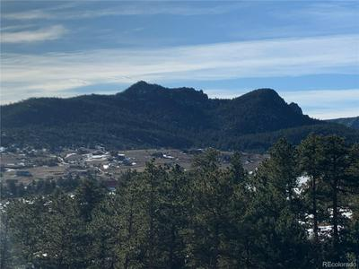 155 WILD TURKEY PL, Drake, CO 80515 - Photo 1