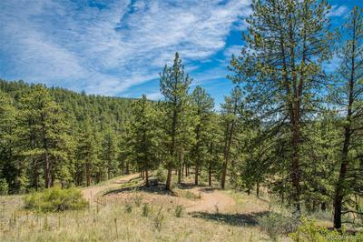 14433 S ELK CREEK RD LOT 8, Pine, CO 80470 - Photo 1