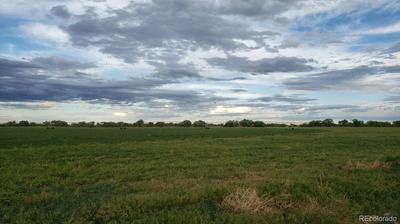 6 COUNTY ROAD, Wiggins, CO 80654 - Photo 1