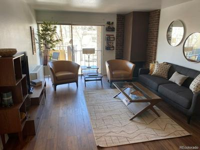 700 N WASHINGTON ST APT 310, Denver, CO 80203 - Photo 2