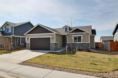 110 BLUEBELL CT, Wiggins, CO 80654 - Photo 1