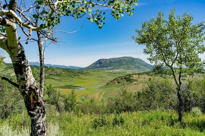 39125 THOMPSON LN, Steamboat Springs, CO 80487 - Photo 1