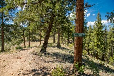 14433 S ELK CREEK RD LOT 11, Pine, CO 80470 - Photo 1