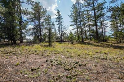 LOTS 1 &2 19TH TRAIL, Cotopaxi, CO 81223 - Photo 1