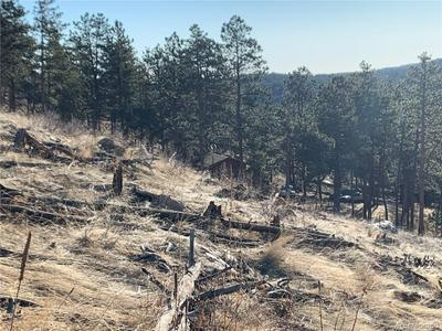 155 WILD TURKEY PL, Drake, CO 80515 - Photo 2