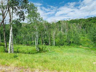 56025 HANNAHS WAY, Clark, CO 80428 - Photo 1