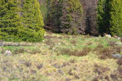 LOT 8 CUMBRES ESTATES S.D., Antonito, CO 81120 - Photo 2