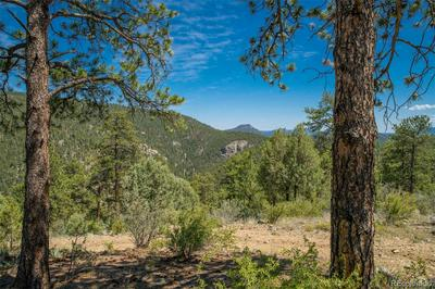 14433 S ELK CREEK RD LOT 10, Pine, CO 80470 - Photo 1