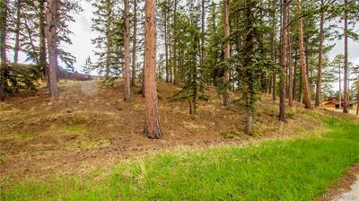 635 MEADOWLARK LN, Woodland Park, CO 80863 - Photo 2