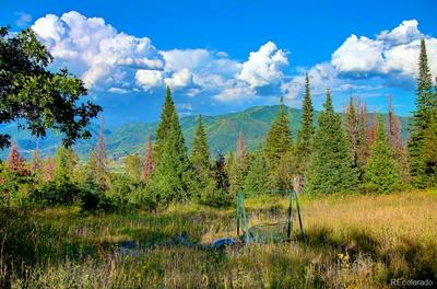 30290 BLUE GROUSE LN, Steamboat Springs, CO 80487 - Photo 2