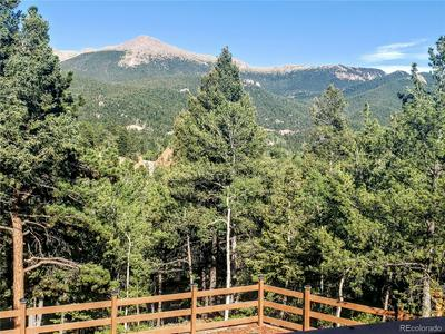 107 RAINBOW CT, Divide, CO 80814 - Photo 2