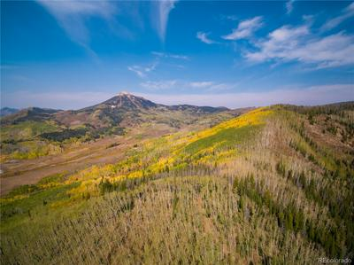 TBD USFS ROAD 409, Clark, CO 80428 - Photo 1