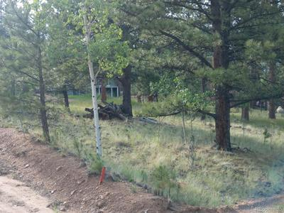227 ANDERSON RD, Bailey, CO 80421 - Photo 1