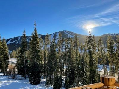 201 ANTLER WAY, Winter Park, CO 80482 - Photo 2