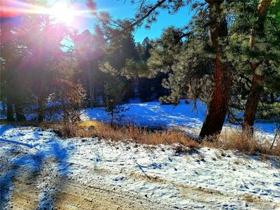 33750 WARREN RD, Pine, CO 80470 - Photo 2