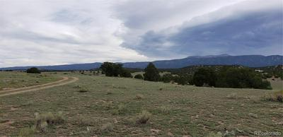 LOT 35 COLORADO LAND & GRAZING, Gardner, CO 81040 - Photo 1