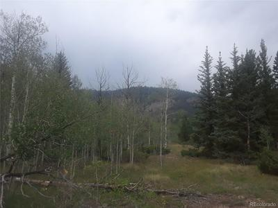 BEAR PAW COURT, Antonito, CO 81120 - Photo 2