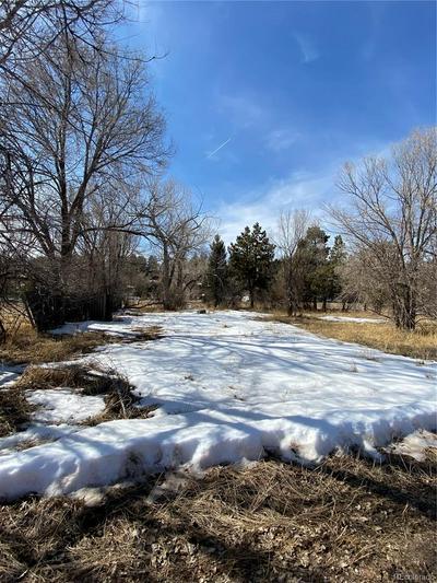 24100 ELBERT ST, ELBERT, CO 80106 - Photo 2