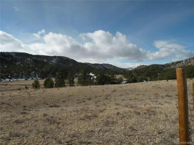 25 MCCLURE GULCH ROAD, Cotopaxi, CO 81223 - Photo 2