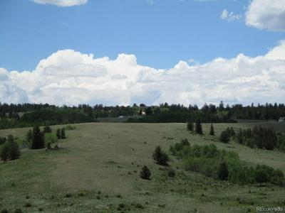 1321 LIPPZANA RD, Jefferson, CO 80456 - Photo 2