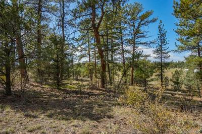 LOTS 1 &2 19TH TRAIL, Cotopaxi, CO 81223 - Photo 2