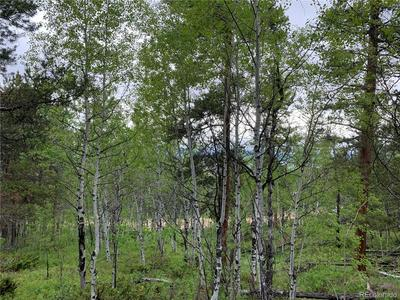 574 GCR 899/OVERLOOK DRIVE, Granby, CO 80446 - Photo 2