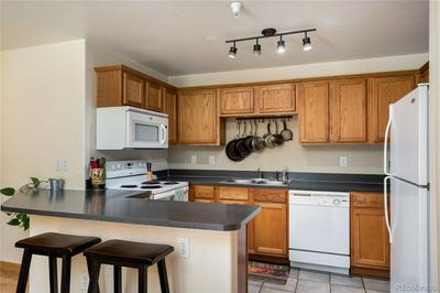 3330 COLUMBINE DR UNIT 1001, Steamboat Springs, CO 80487 - Photo 2