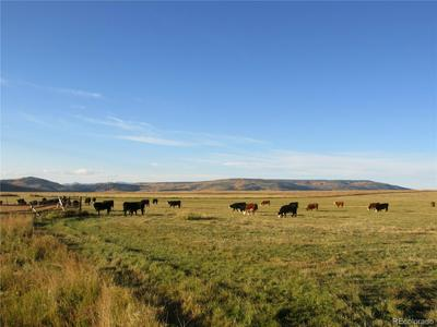 35470 STATE HIGHWAY 134, Toponas, CO 80479 - Photo 2