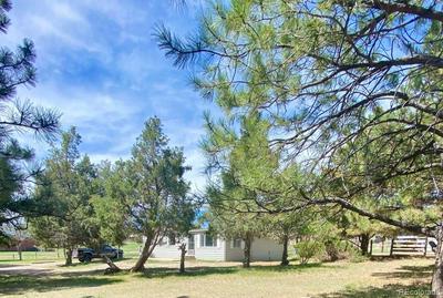 625 PADDOCK ST, Elizabeth, CO 80107 - Photo 2