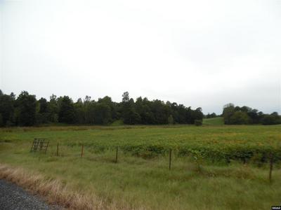 CECIL ROBERTS ROAD, Troy, TN 38260 - Photo 2