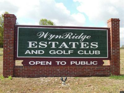 1001 WYNLAKE DR, Troy, TN 38260 - Photo 1