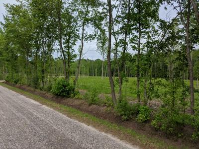 LOT X MUGGINS CREEK ROAD, Gloucester County, VA 23061 - Photo 2