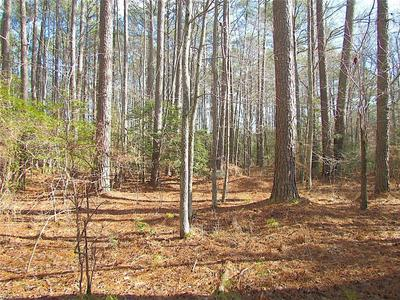 20.7 AC RIDGE ROAD, Cobbs Creek, VA 23035 - Photo 2