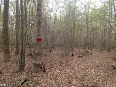 100 AC GUM COURT, Chesapeake, VA 23321 - Photo 1
