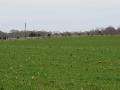 8000 CAPITAL HILL RD., Fountain Run, KY 42133 - Photo 2