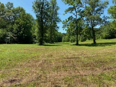 1900 FROEDGE DUBRE RD, Summer Shade, KY 42166 - Photo 2