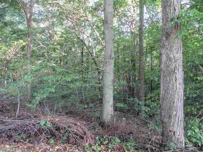 0 SCOTT LN., Scottsville, KY 42164 - Photo 1