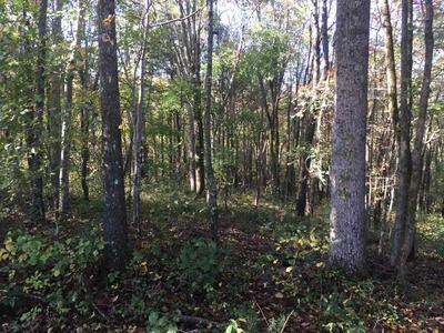 LOT 14 HIDEAWAY BAY CAPITOL HILL RD, Fountain Run, KY 42133 - Photo 2