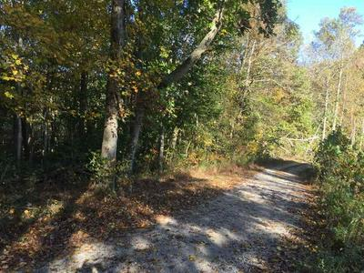 LOT 14 HIDEAWAY BAY CAPITOL HILL RD, Fountain Run, KY 42133 - Photo 1
