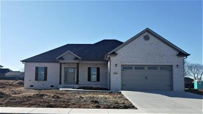 8780 STUART FARM AVE, Bowling Green, KY 42104 - Photo 1