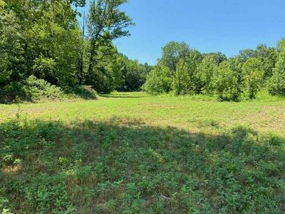 194 W FROEDGE DUBRE RD, Summer Shade, KY 42166 - Photo 2